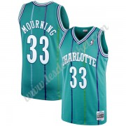 Maillot NBA Charlotte Hornets 1992-93 Alonzo Mourning 33# Sarcelle Hardwood Classics Swingman..