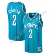 Maillot NBA Charlotte Hornets 1992-93 Larry Johnson 2# Sarcelle Hardwood Classics Swingman..