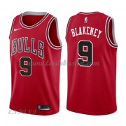 Maillot Basket Enfant Chicago Bulls 2018 Antonio Blakeney 9# Icon Edition..