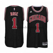 Maillot NBA Chicago Bulls 2015-16 Derrick Rose 1# Alternate..