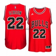 Maillot NBA Chicago Bulls 2015-16 Taj Gibson 22# Road..