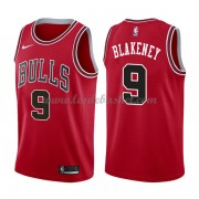Maillot NBA Chicago Bulls 2018 Antonio Blakeney 9# Icon Edition..