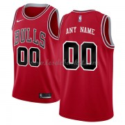 Maillot NBA Chicago Bulls 2018 Icon Edition..