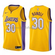 Maillot Basket Enfant Los Angeles Lakers 2018 Julius Randle 30# Icon Edition..