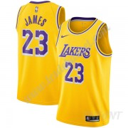 Maillot De Basket Enfant Los Angeles Lakers 2019-20 LeBron James 23# Or Icon Edition Swingman..