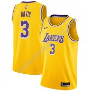 Maillot NBA Los Angeles Lakers 2019-20 Anthony Davis 3# Or Icon Edition Swingman