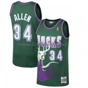 Maillot Basket Enfant Milwaukee Bucks 1996-97 Ray Allen 34# Green Hardwood Classics..