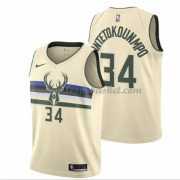 Maillot NBA Milwaukee Bucks 2018 Giannis Antetokounmpo 34# City Edition..